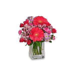 دسته گل سروناز