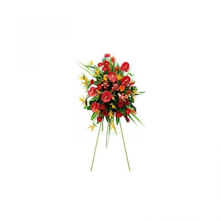 پایه گل آنتوریوم  استرزیا و ژربرا