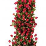 پایه گل رز قرمز