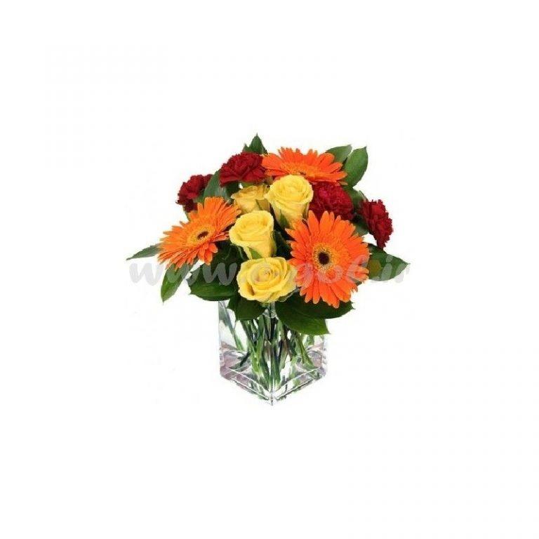 گل هیوا