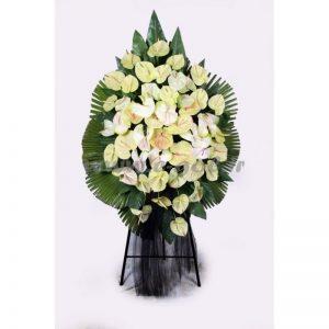 پایه گل آتوریوم