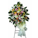 پایه گل مهتاب