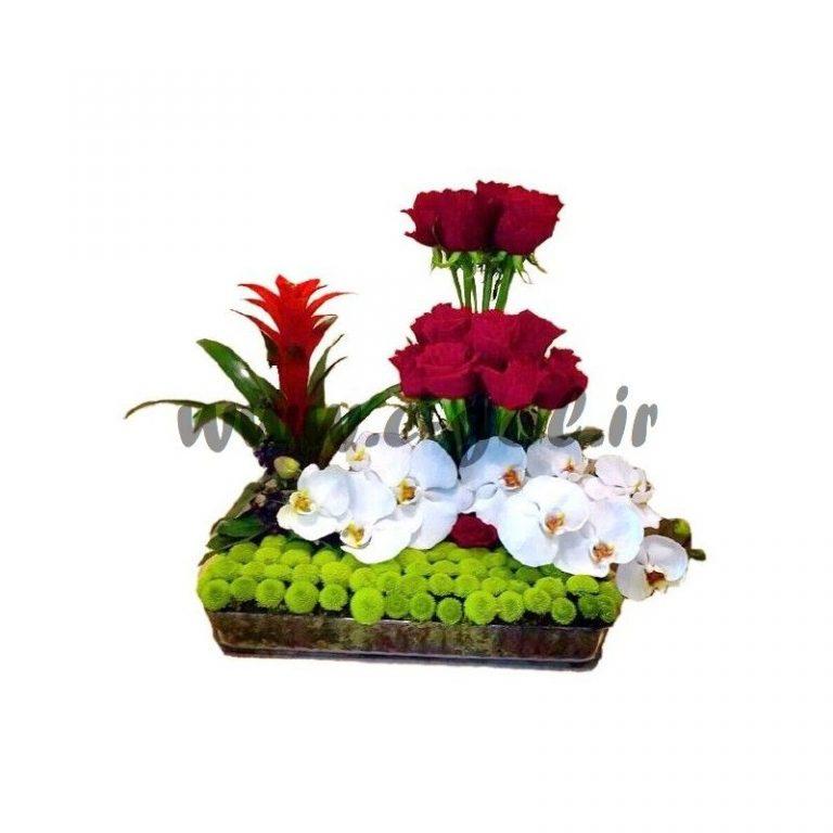 گل یسنا