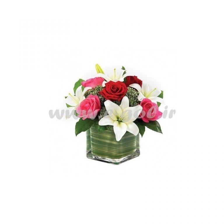 گل ارغوان