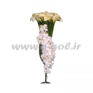 گل سارینا