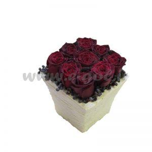 گل تانیا