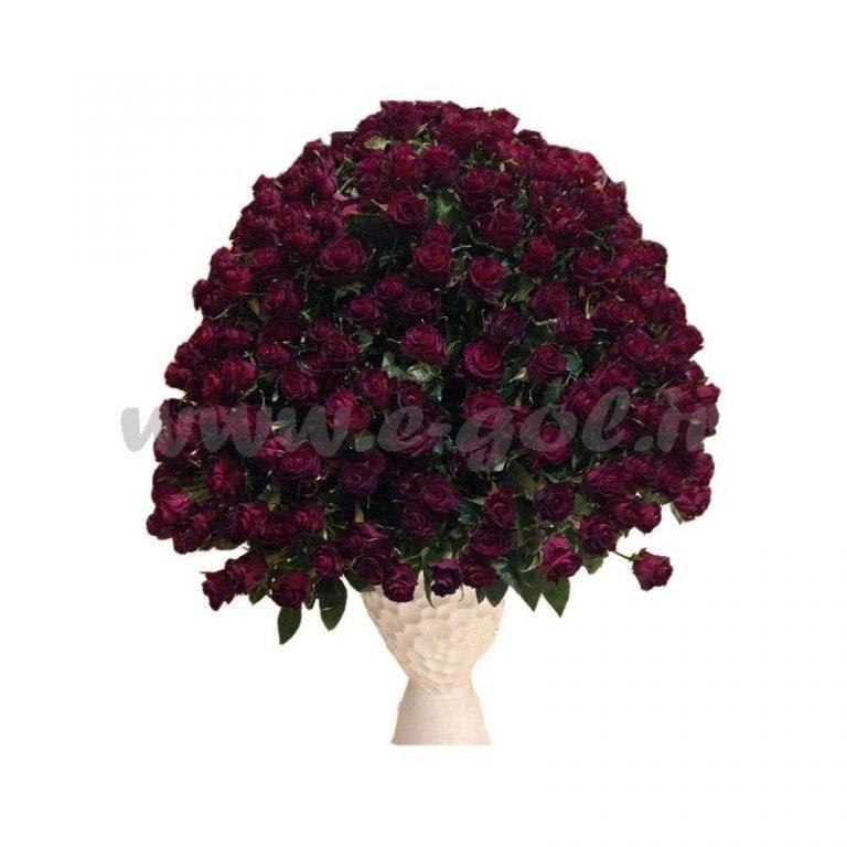 گل یاشیل