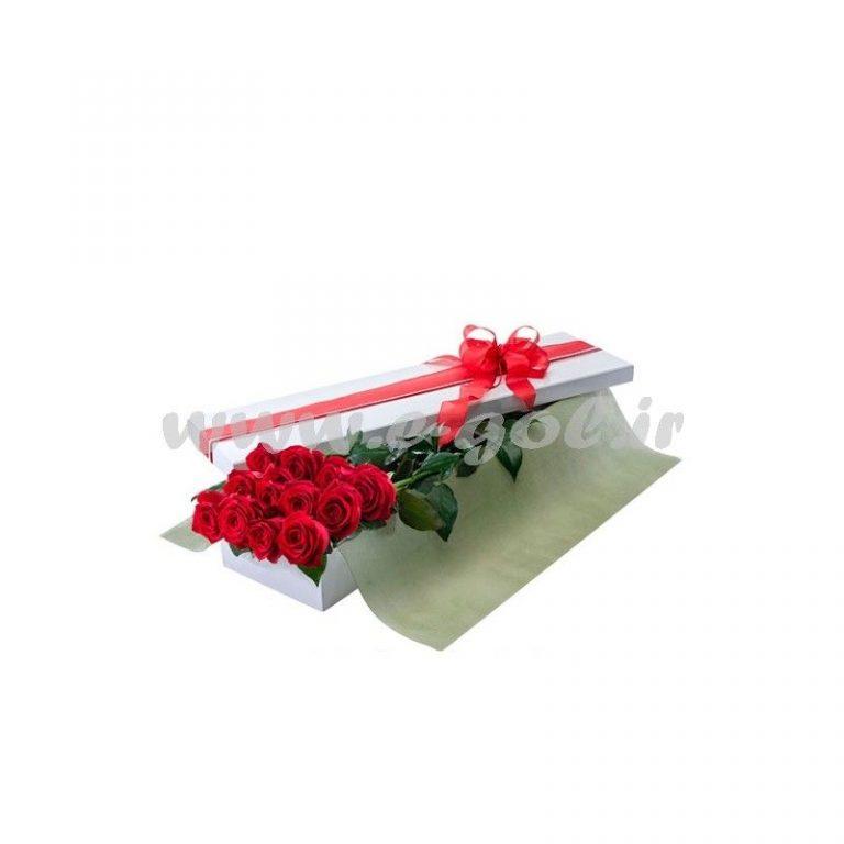 گل پارمیس