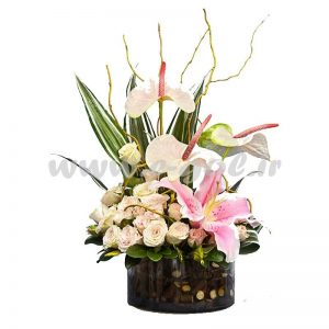 گل آنیتا