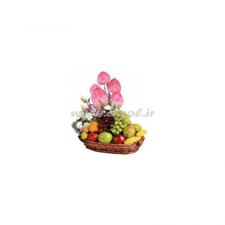 گل یلدا