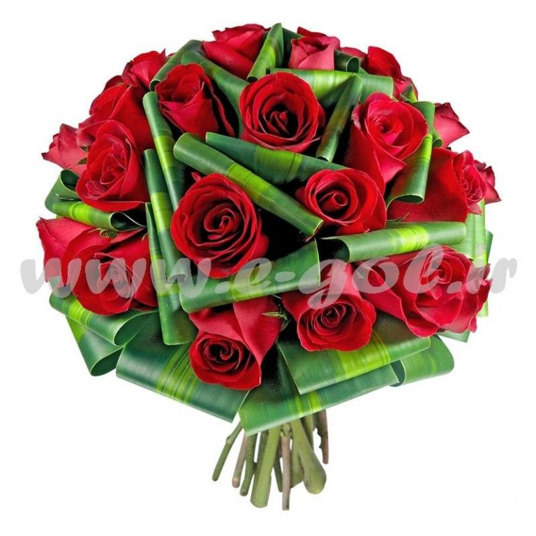 گل نازلی