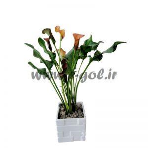 گلدان شیپوری