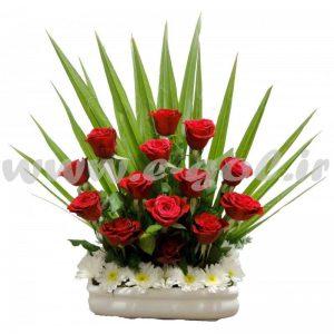 گل پاملا
