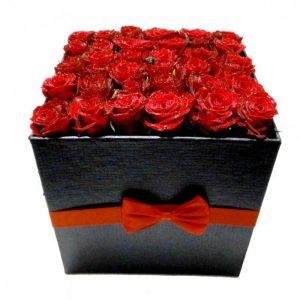 گل دل انگیز