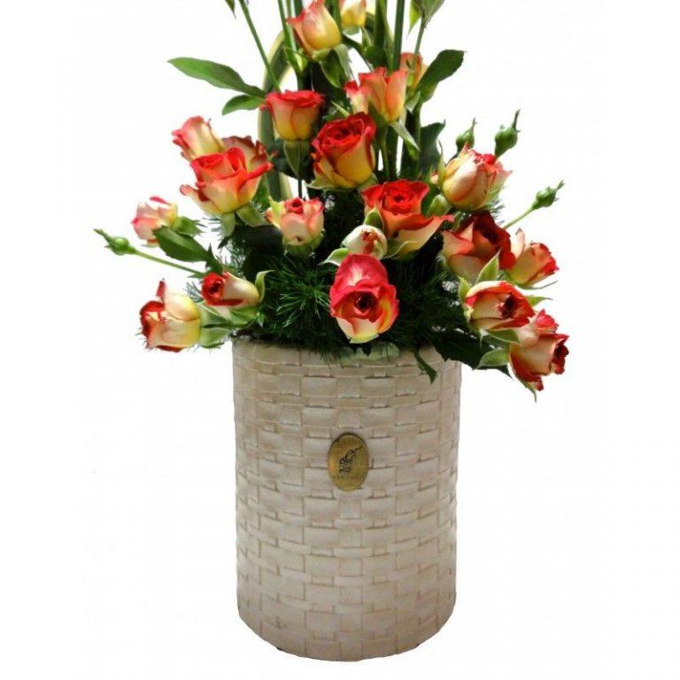 گل ویشکا