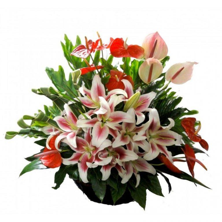 گل روح انگیز