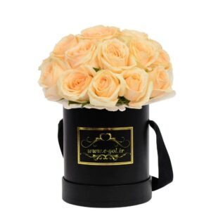 جعبه گل آریتا