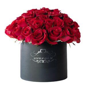 جعبه گل مارینا