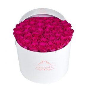 جعبه گل وانیا