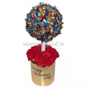 درختچه شکلات دلوکس