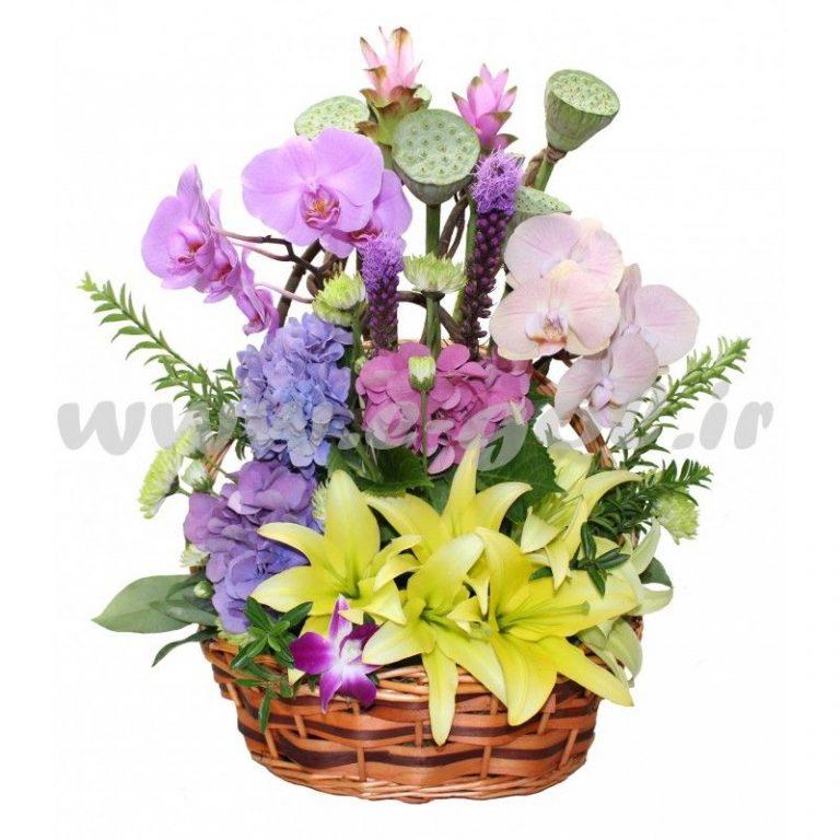گل رامیا
