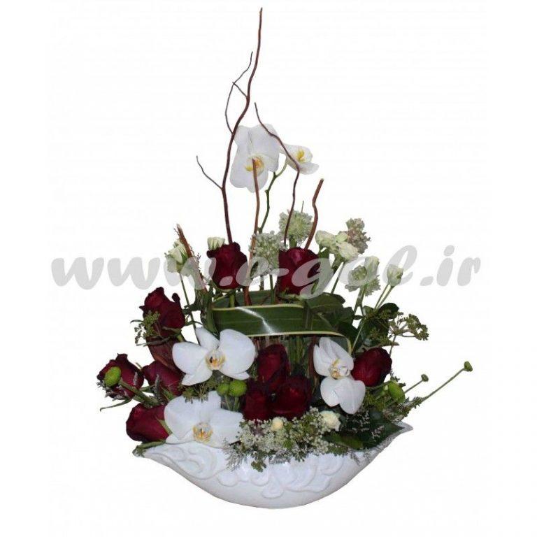گل مژان