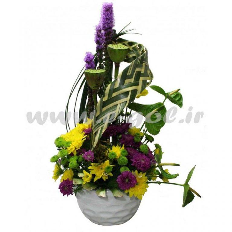 گل توکا