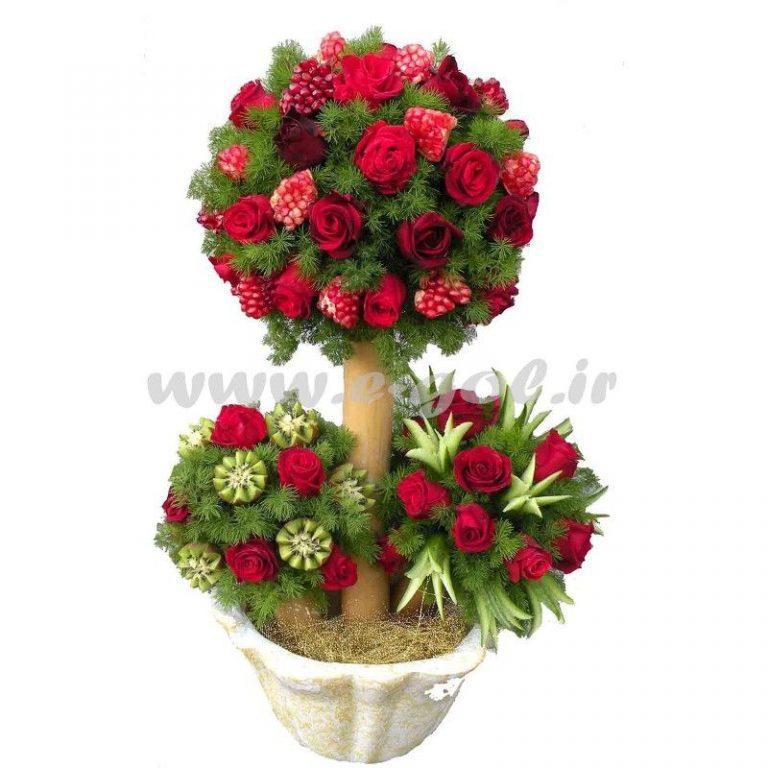 گل سایدا