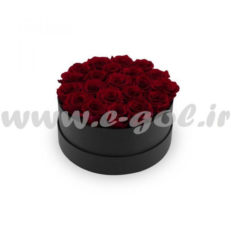 گل آشتی