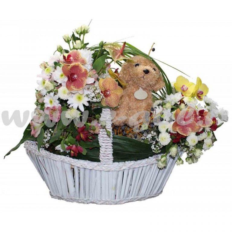 گل مهراسا