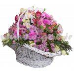گل آنجلا
