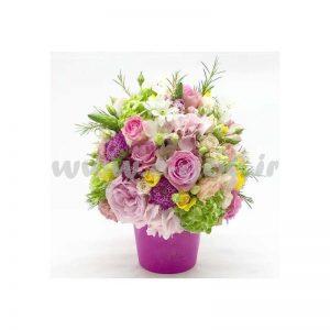 گل آتریسا