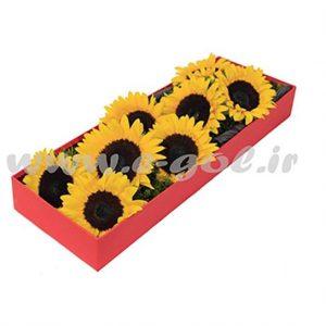جعبه گل آفتاب