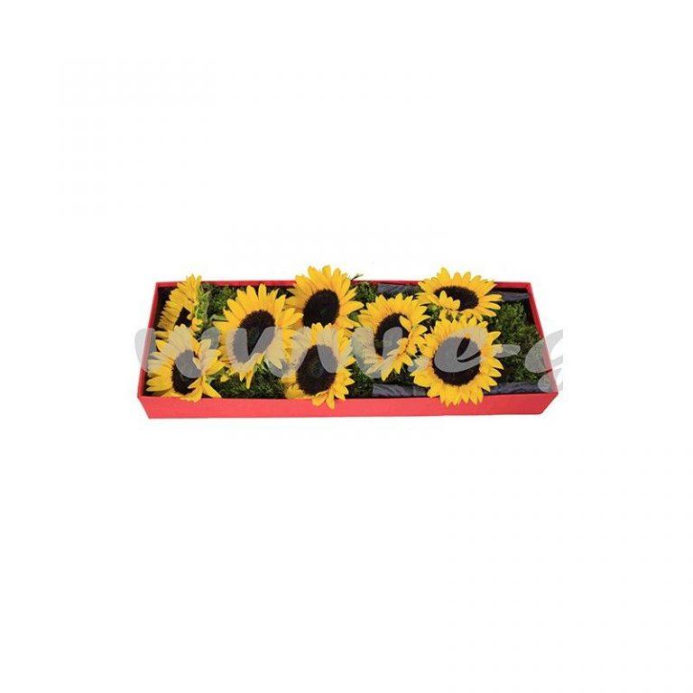 گل آفتاب