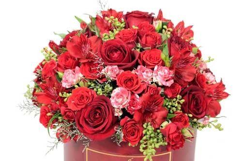 گل شارلوت