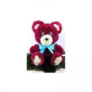 خرس مینیاتوری