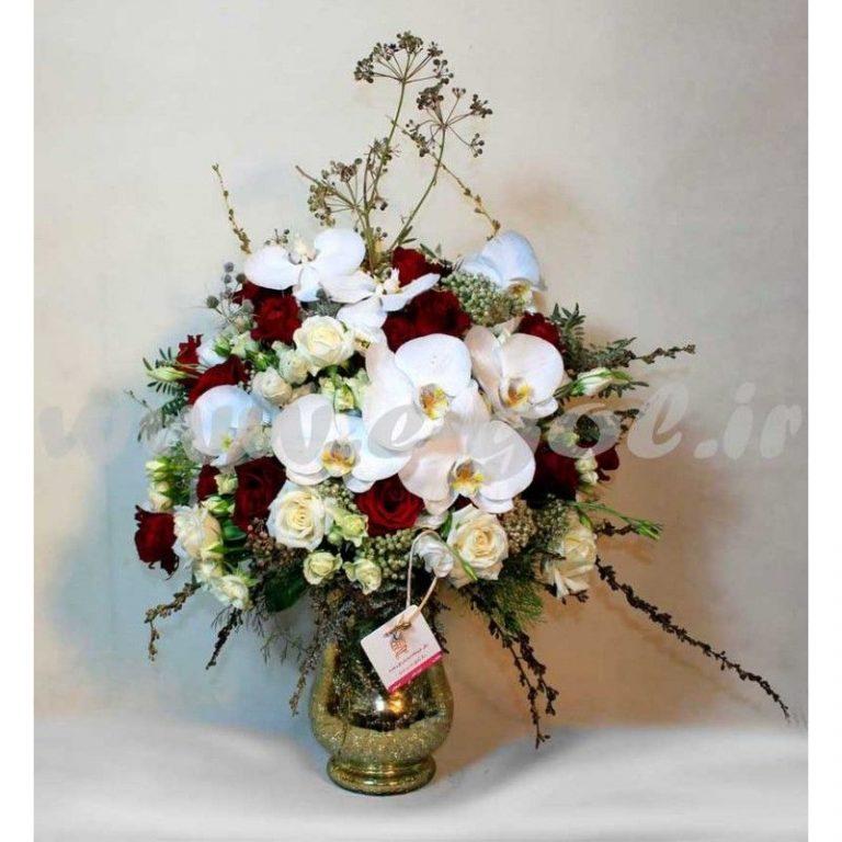 گل آموتیا