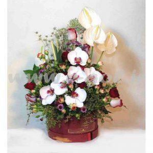 گل هیلدا