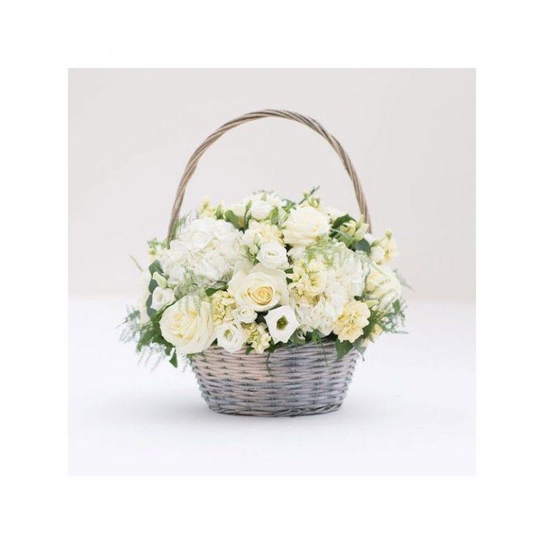 گل مهرآنا