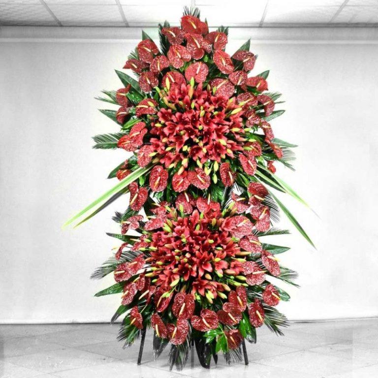 پایه گل فرنیا