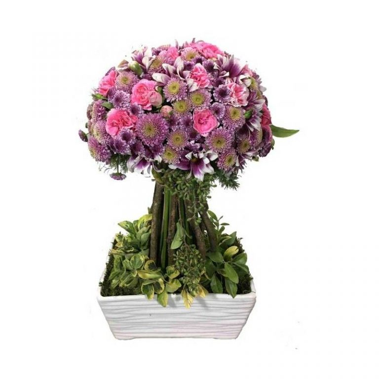 گل آریان