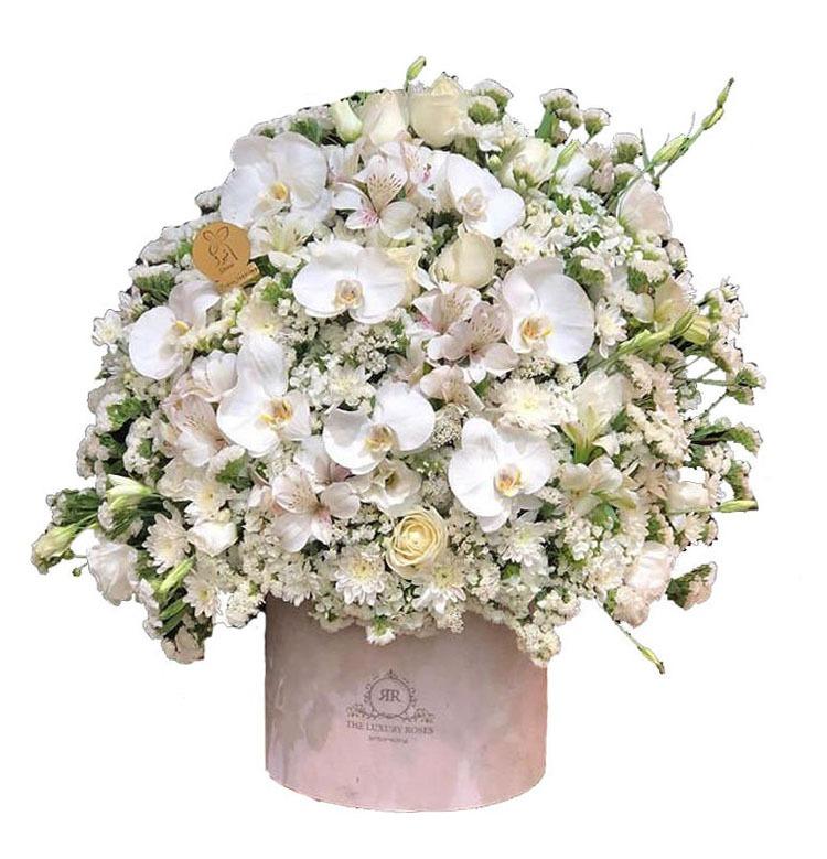 چعبه گل آرمیس
