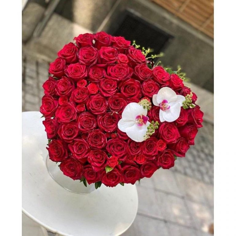 گل وانیا