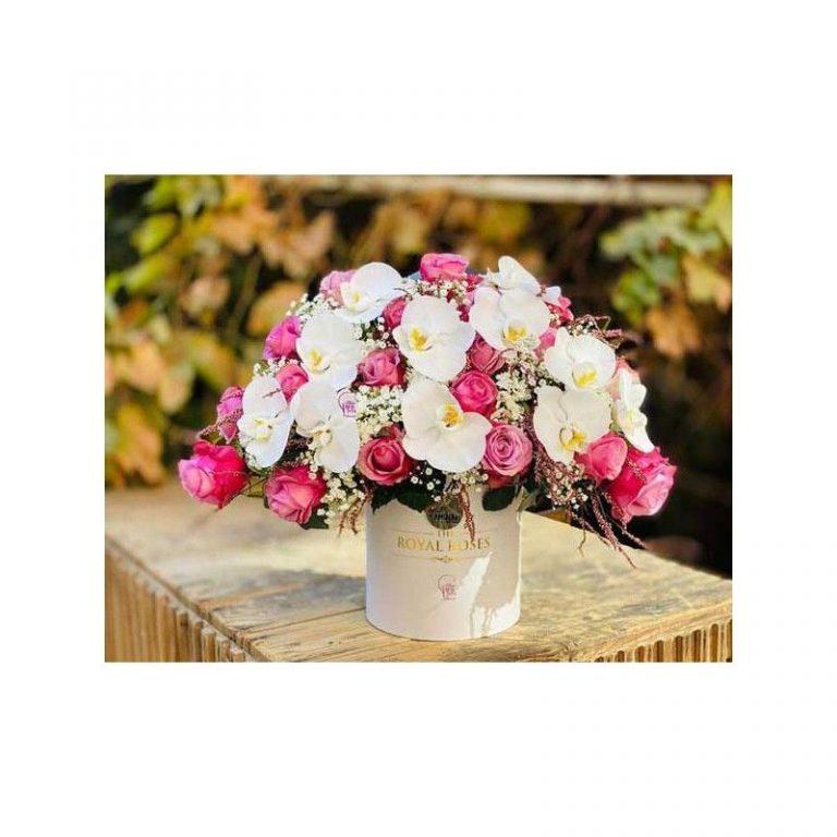 گل شادان
