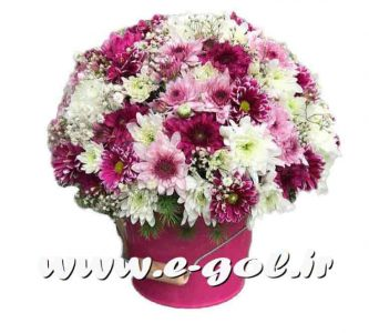 سطل گل آتیلا